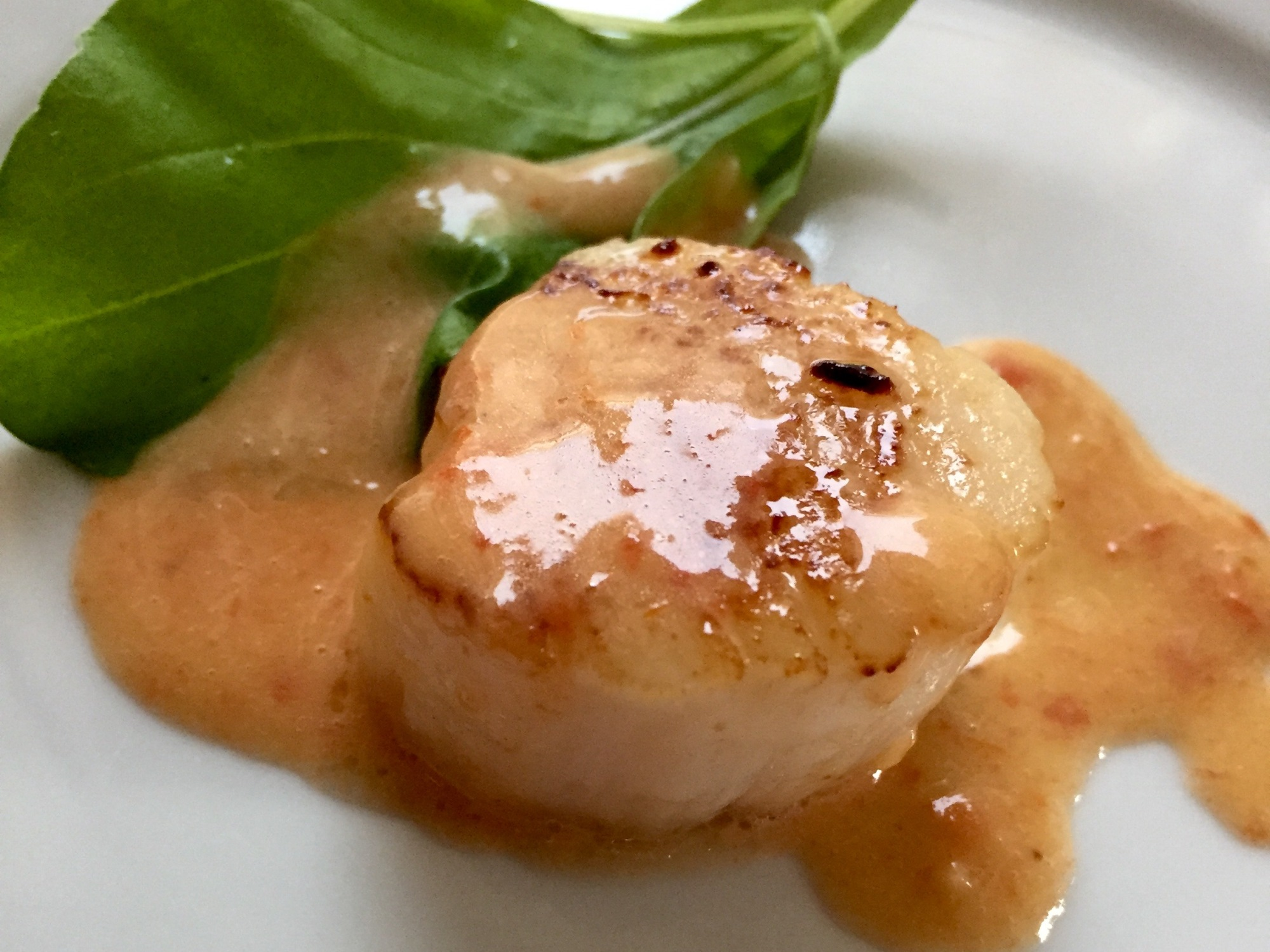 Seared Scallops With Tomato Beurre Blanc Portia 39 S Turntable